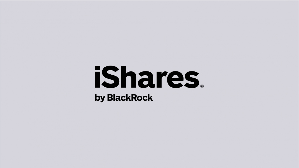 iShares Wordmark