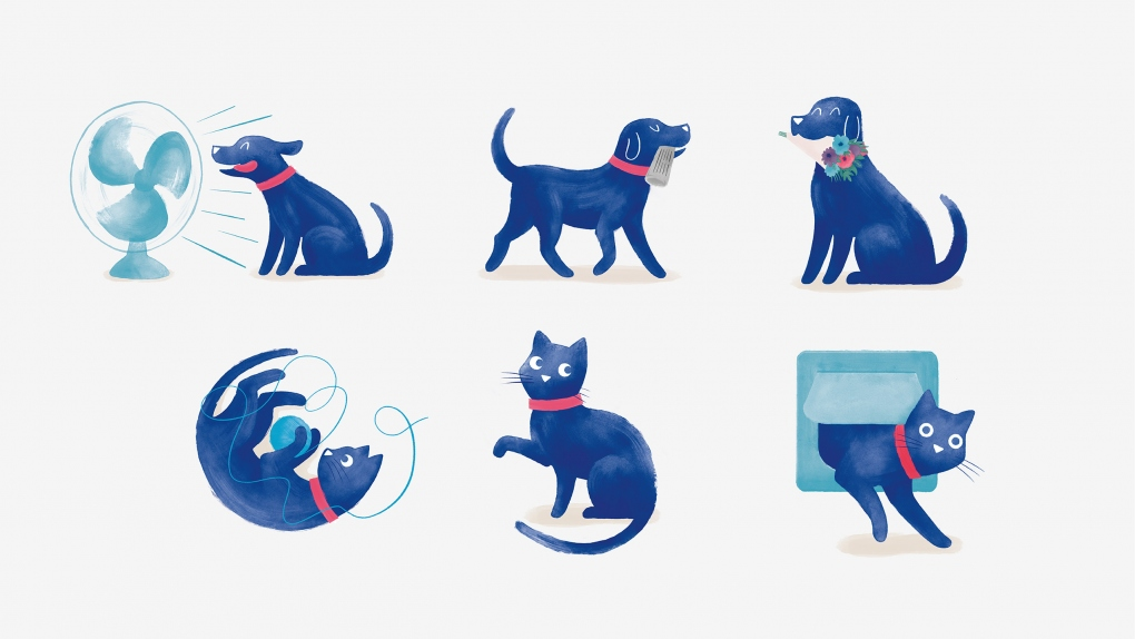 Medivet Dog & Cat Character Illustrations